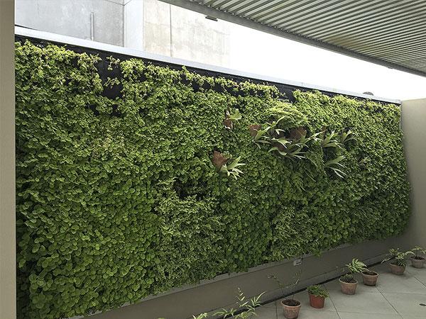 Instalaci n de jardines verticales tierra verde for Instalacion de jardines verticales